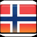 norveççe tercüme