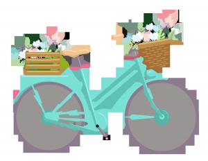 bisiklet danimarka