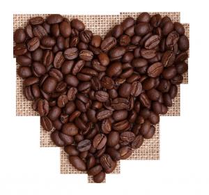 kahve festivali
